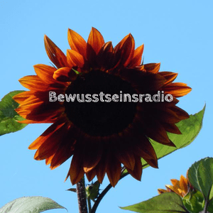 Radio bewusstseinsradio