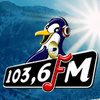 Radio Pinguin 103.6 FM