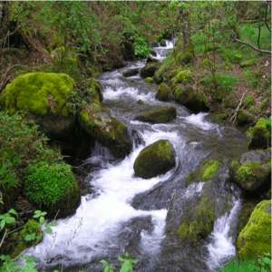 Ondas del río Guarapas 103.5 FM