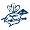 NJOY Radio 91.3 fm | Wien