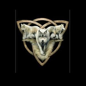 Radio Radio-Night-Wolf