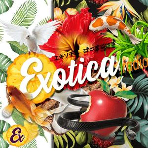 Radio Exotica Radio