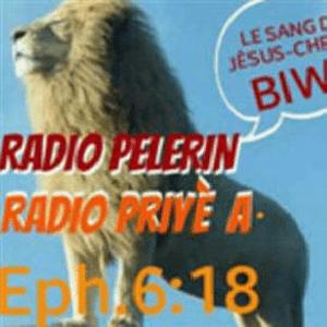 Radio Pelerin 87.5 FM