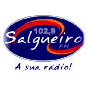 Rádio Salgueiro 102.9 FM